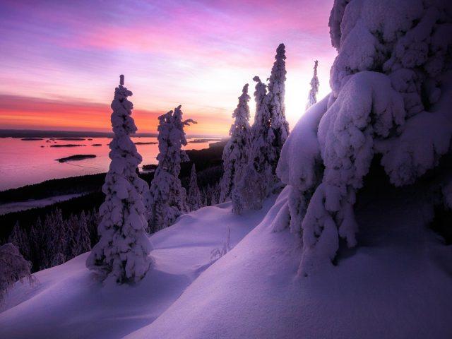 Заснеженный зимний пейзаж