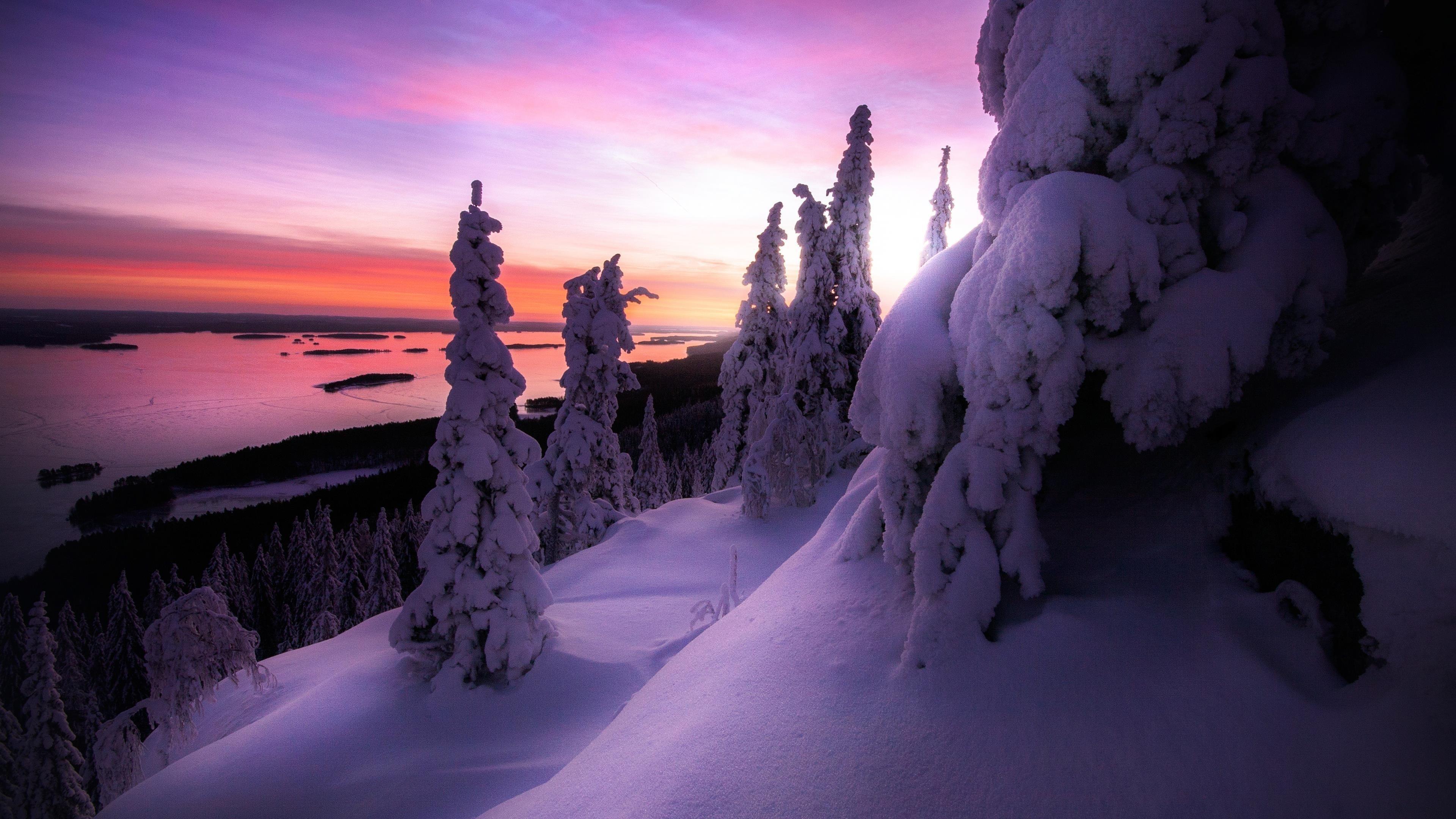 Заснеженный зимний пейзаж обои скачать