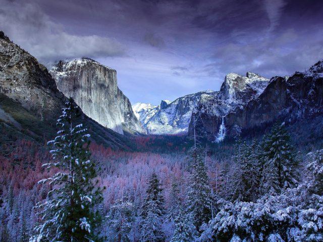 Горы под черным облачным небом в Йосемитском лесу природа