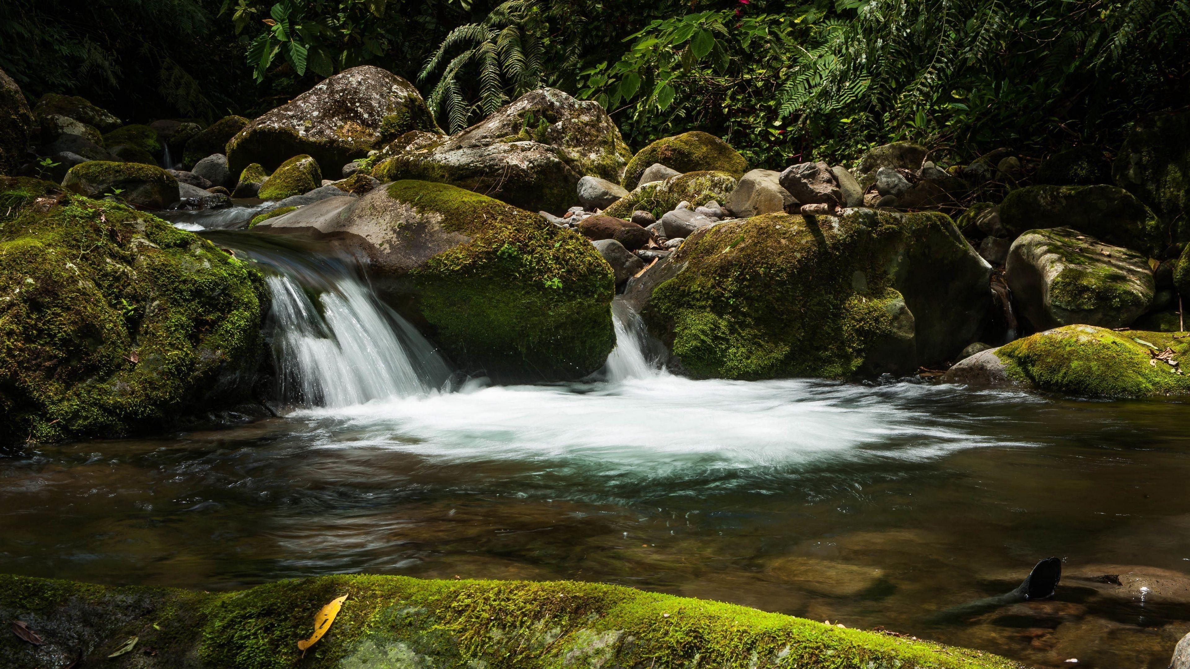 Водопад камни мох водные растения обои скачать