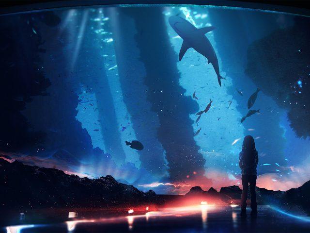 Океан под водой