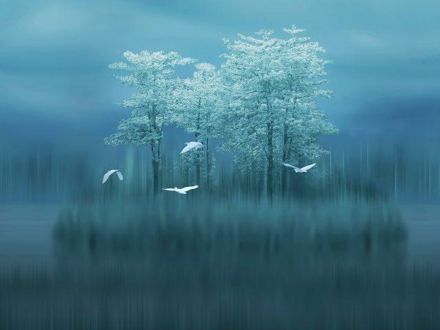 Запас озера huawei mate10