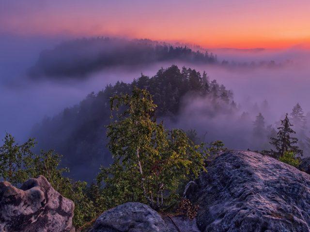 Заснеженная гора с зелеными деревьями с красочными облаками в дневное время природа