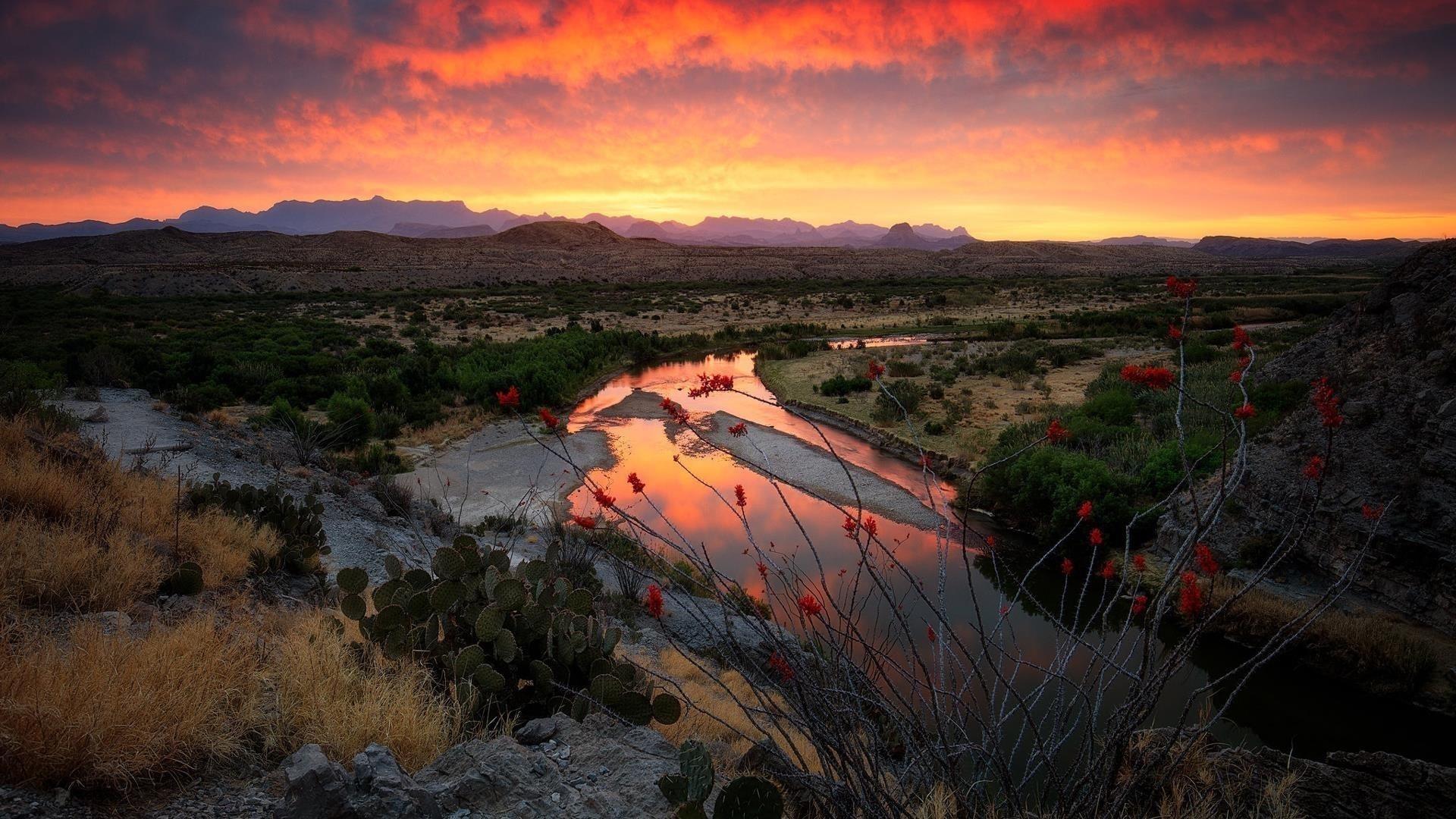 Река между кактусами и зелеными деревьями с пейзажем горы под огненным облачным небом природа обои скачать