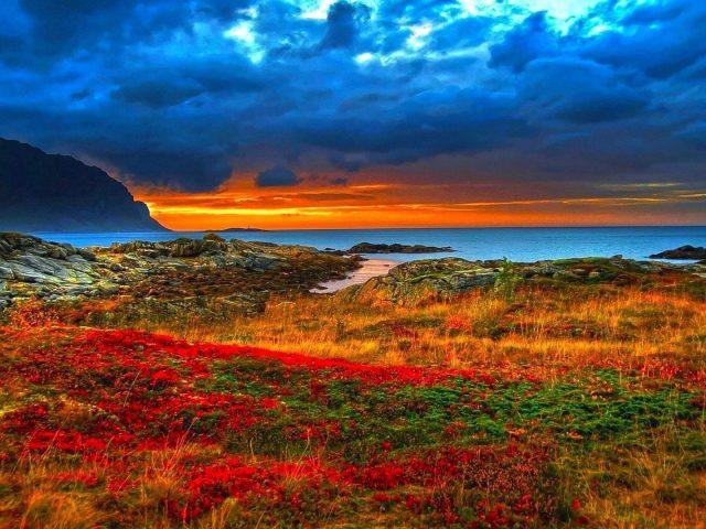 Пейзаж вид на горы под облачным голубым небом рядом с океаном и красочными цветами покрытая земля природа