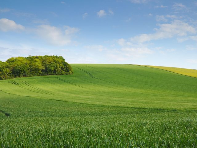Поле, луг, холм, небо, минимализм