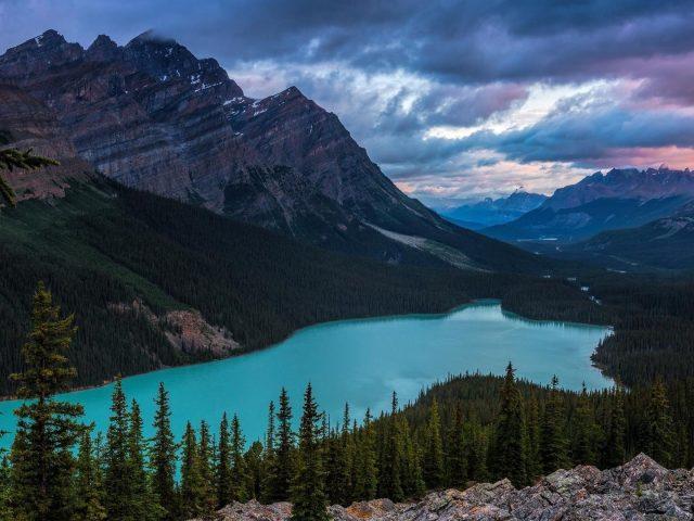 Озеро между горами и зелеными деревьями в дневное время природа