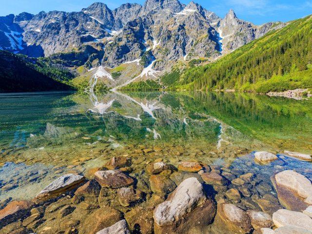 Пейзаж вид на бело-зеленую гору отражение на реке зеленые деревья склон природа