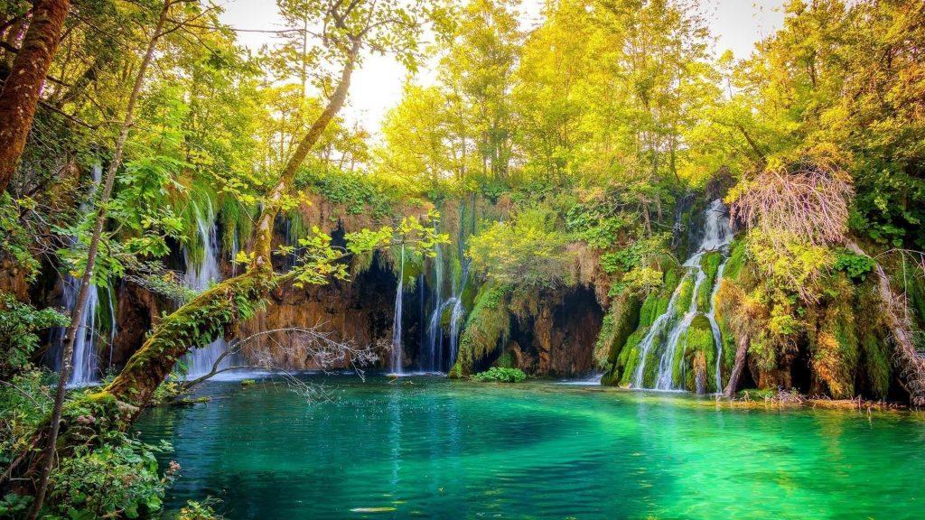 Множество водопадов на скалах, льющихся на реку, окруженную деревьями в лесной природе обои скачать