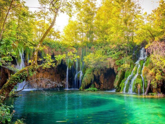 Множество водопадов на скалах, льющихся на реку, окруженную деревьями в лесной природе