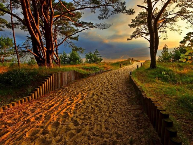 Песчаная дорожка между забором зеленые деревья в голубых белых облаках небо природа