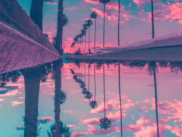 Пальмы отражение небо природа