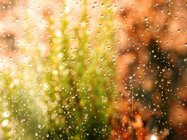 Капли воды на стекле аннотация
