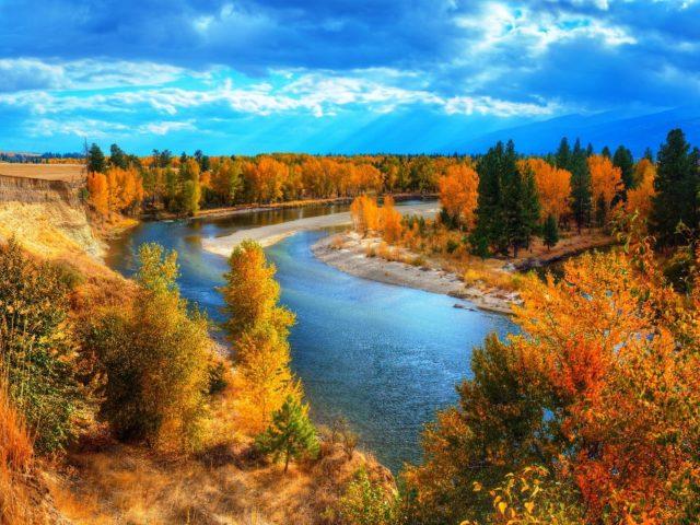 Река между осенними зелеными желтыми листьями деревьев под голубым небом природа