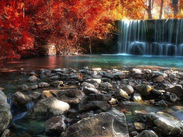 Водопады между красными цветущими деревьями в лесу в дневное время природа