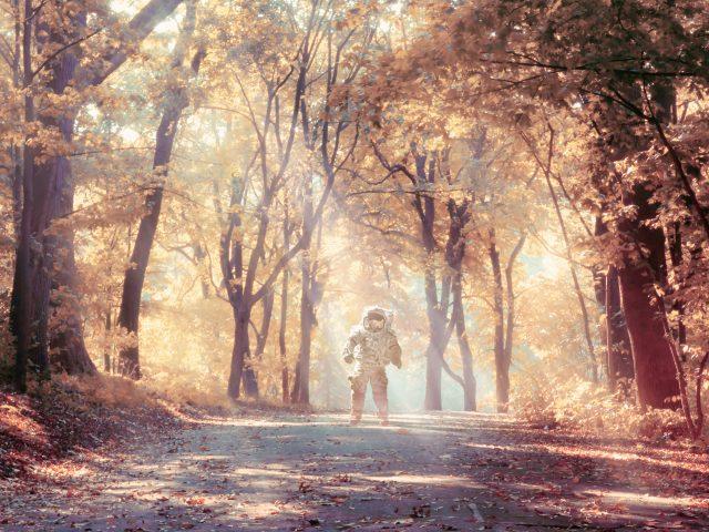 Космонавт осенью