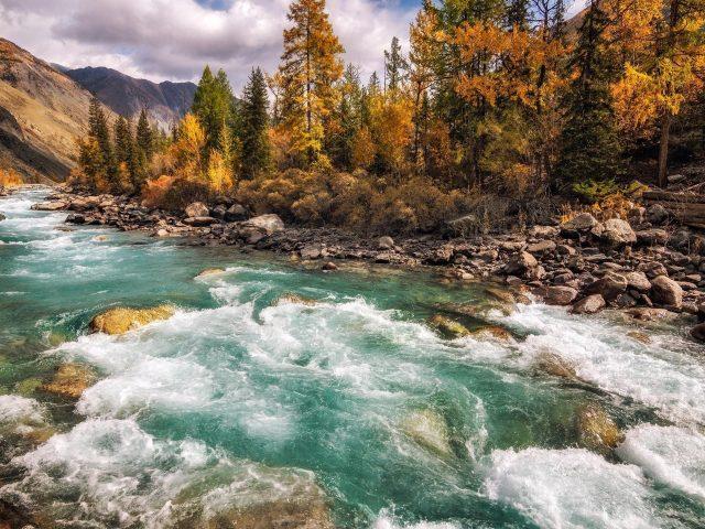 Прекрасный вид на реку между красочными осенними деревьями покрытыми лесом и скалистой природой