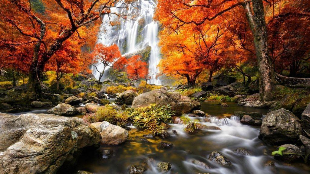 Водопады на горах и водный поток между скал окруженный красно желтыми осенними листьями деревьев лесная природа обои скачать