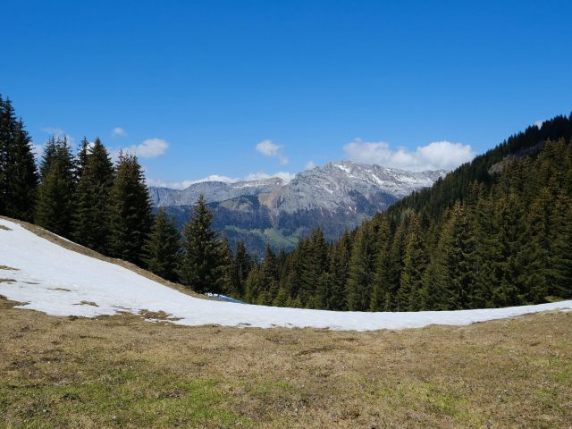 Заснеженный пейзаж горы долина деревья лес под голубым небом природа