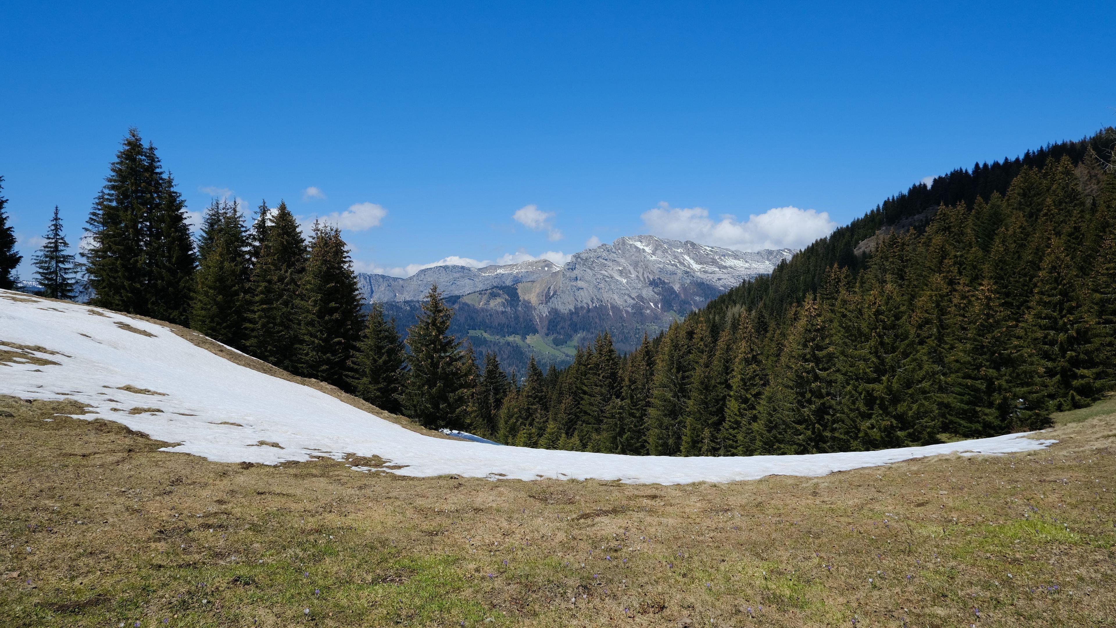 Заснеженный пейзаж горы долина деревья лес под голубым небом природа обои скачать