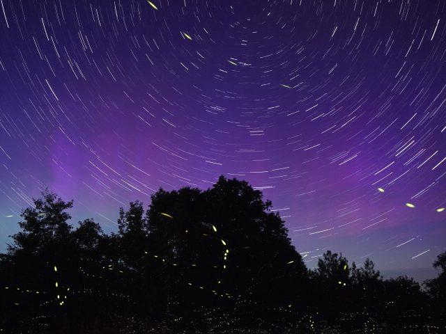Фиолетовое небо звездный след