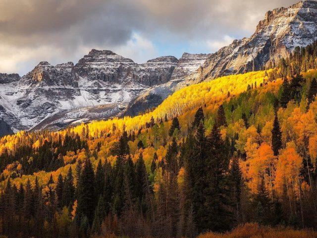 Земля осень лес заснеженная горная природа