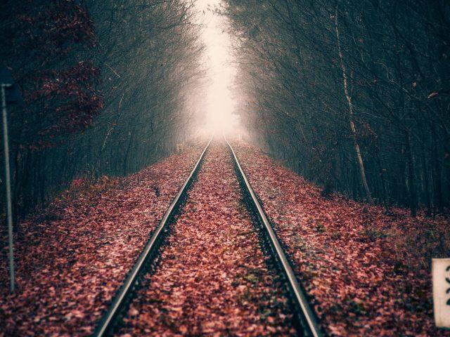 Осенний лесной железнодорожный путь
