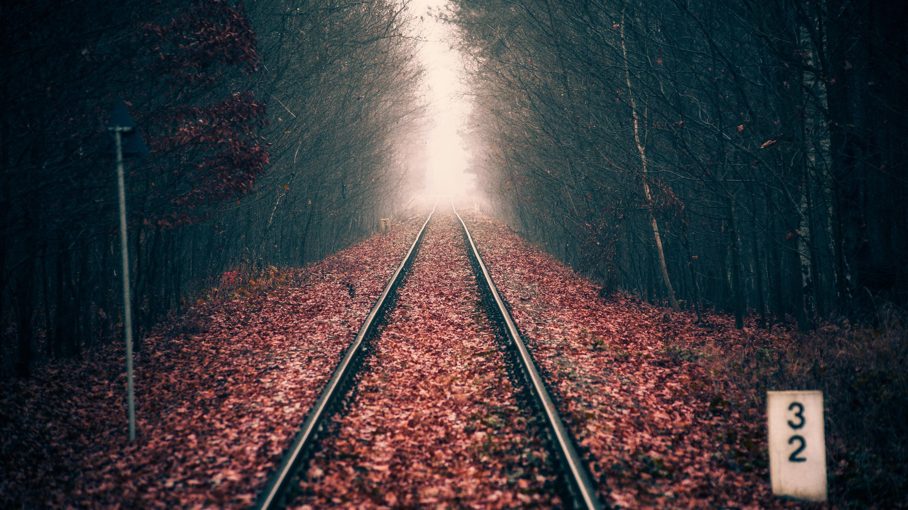 Осенний лесной железнодорожный путь обои скачать