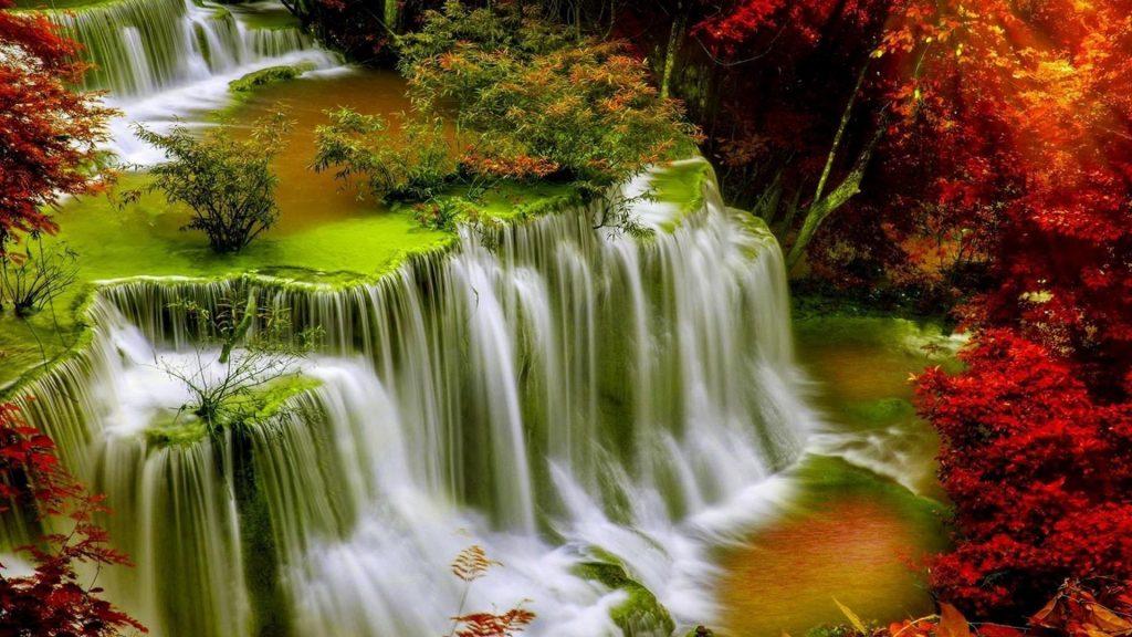 Вид сверху на зелень ручья водопады в окружении красочных осенних деревьев природа обои скачать