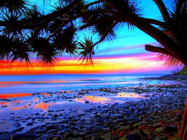 Тропический пейзаж красочный пляж силуэт заката на фоне природы
