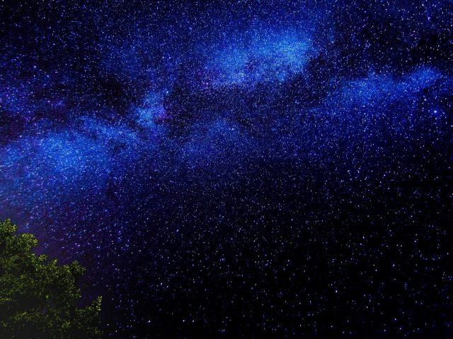 Ветви деревьев звездное небо звезды ночь