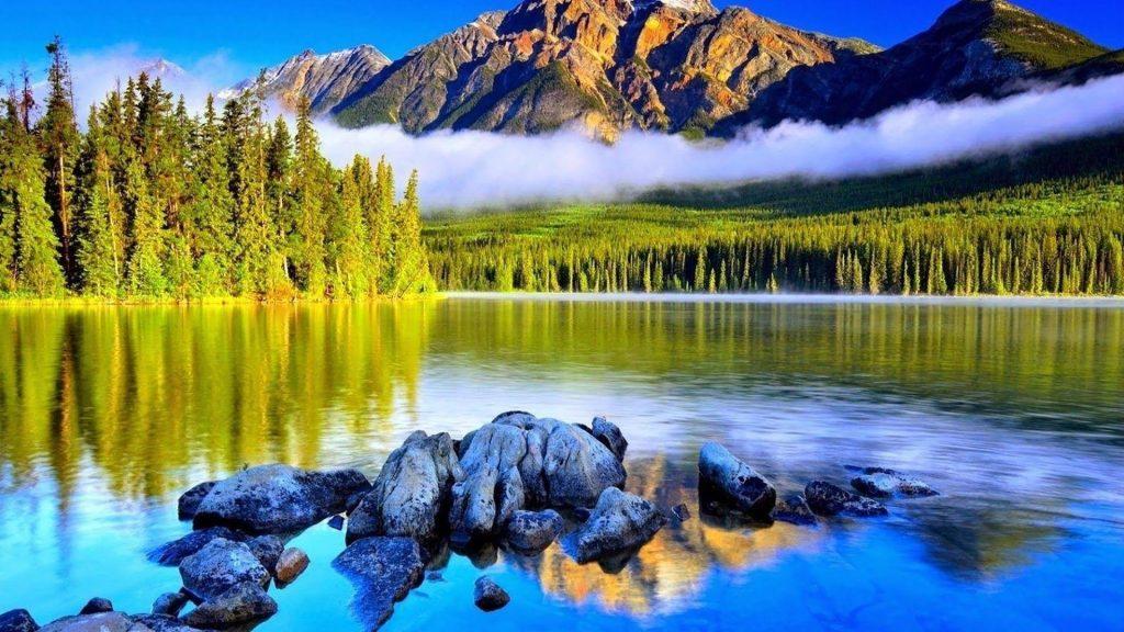 Пейзаж горы с туманом и деревьями покрытый лесом и рекой окруженный деревьями природа обои скачать