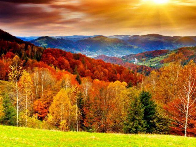 Красочные осенние лиственные деревья с солнечными лучами и пейзажным видом на природу гор