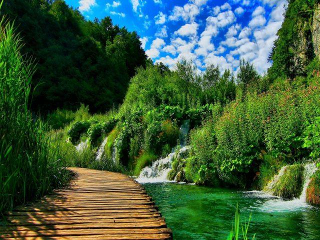 Деревянный причал между водопадом озером и зеленой травой под пасмурным голубым небом природа