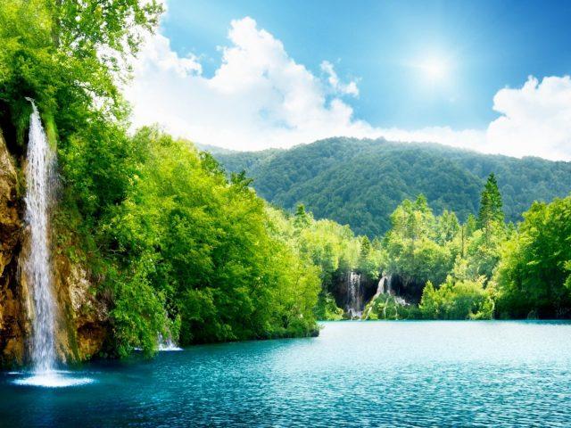 Водопады рядом с зелеными листьями деревьев под голубым небом природа