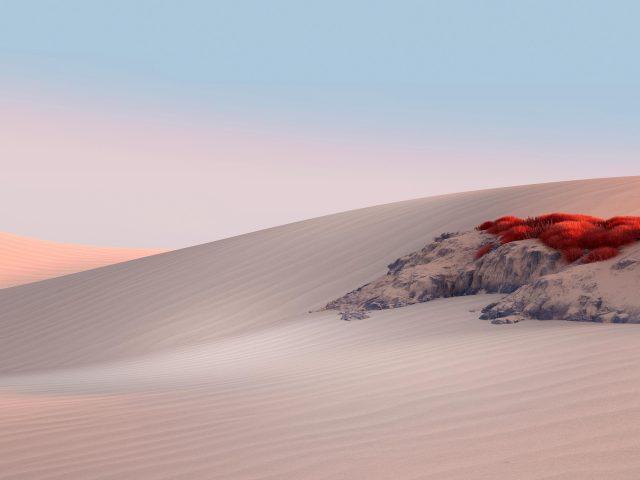 Пустынный пейзаж microsoft surface