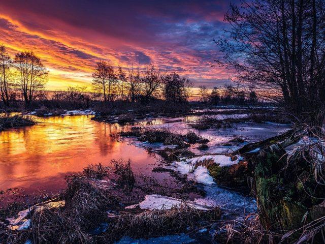 Заснеженные деревья с рекой под красочным облачным небом природа