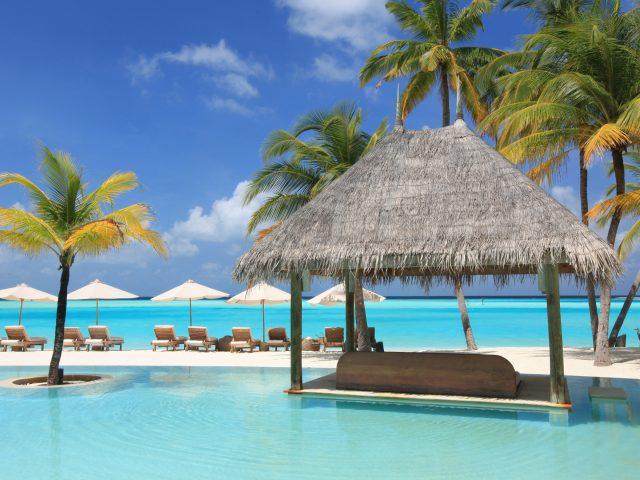 Океан,  пальмы,  отель,  отдых
