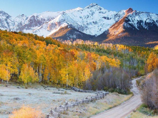 Тропинка между желтыми осенними листьями деревьев с пейзажем белых покрытых гор природы