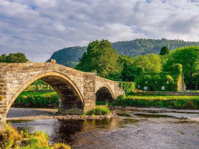 Рукотворный мост под озером между зелеными деревьями в дневное время природа