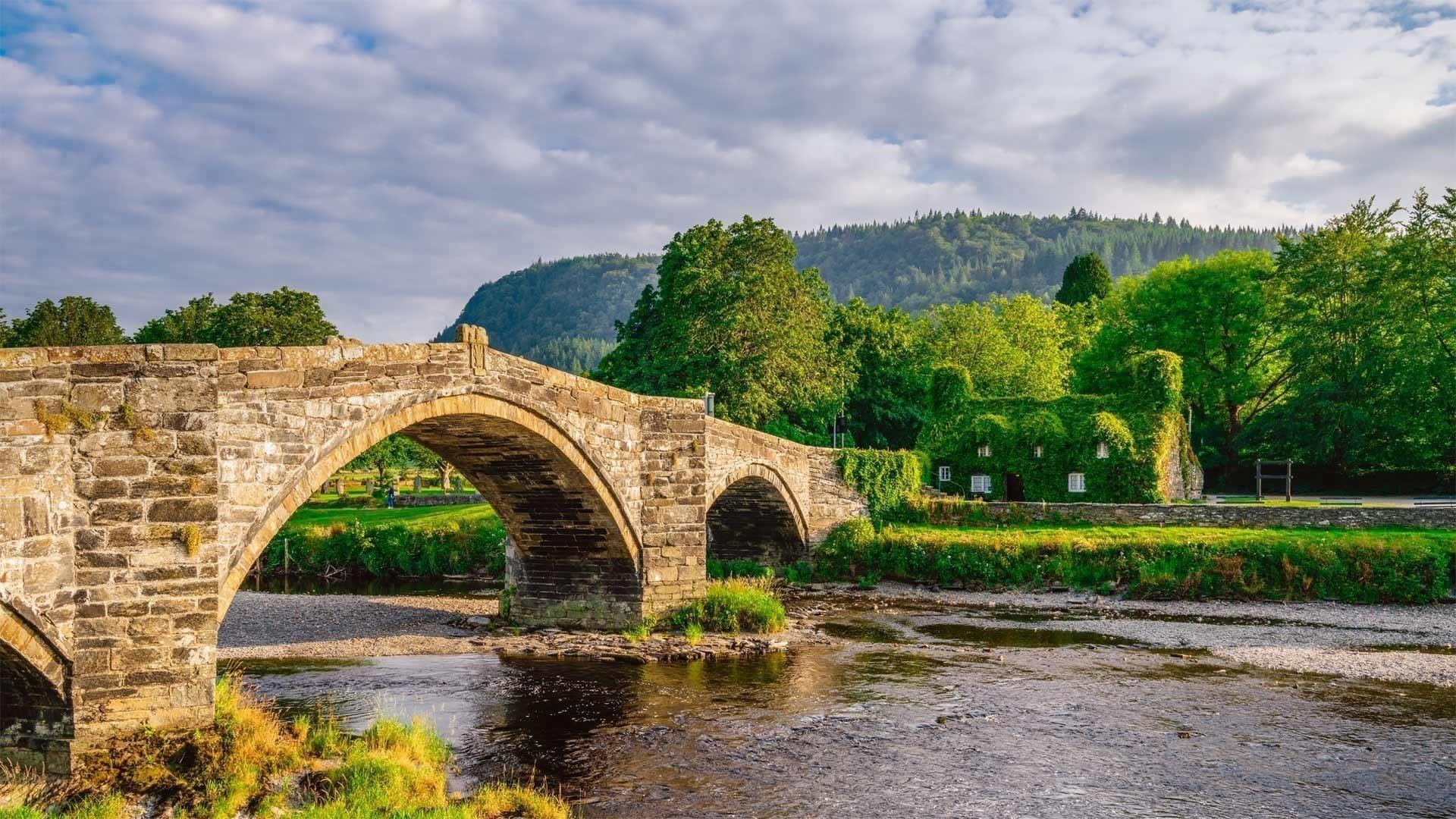 Рукотворный мост под озером между зелеными деревьями в дневное время природа обои скачать