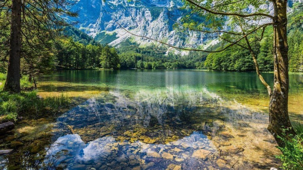 Чистый водоем с отражением природы деревьев и гор обои скачать