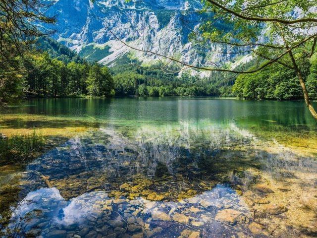 Чистый водоем с отражением природы деревьев и гор