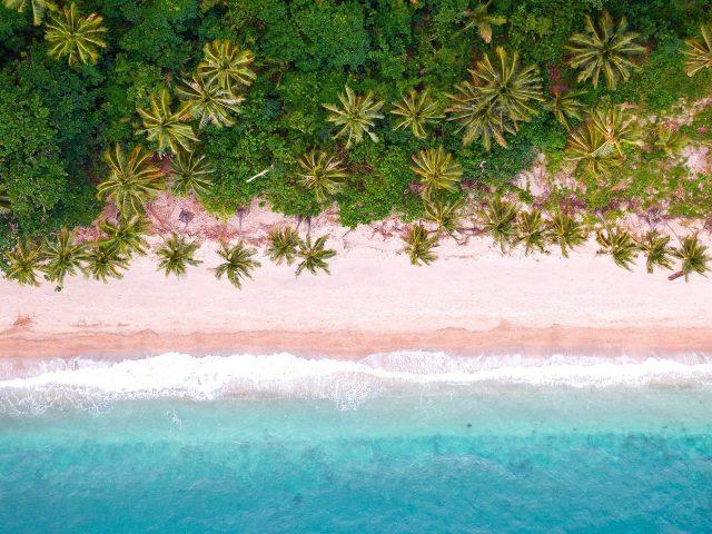 Тропический пляж с высоты птичьего полета