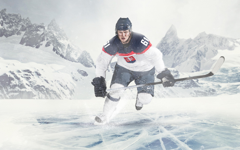 Хоккей на льду. обои скачать
