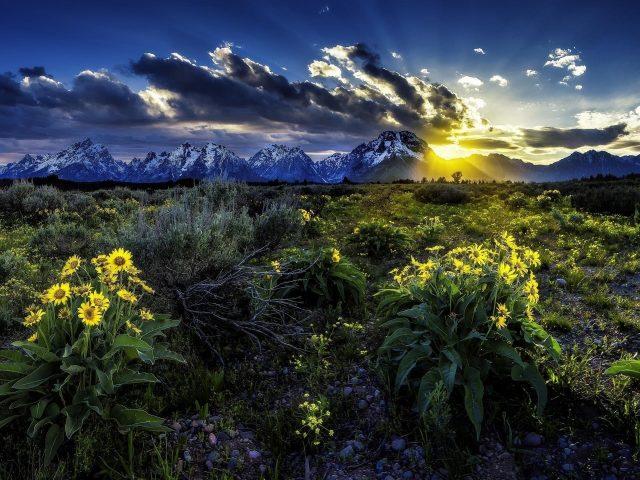 Национальный парк Гранд Титон луг скалистые горы во время восхода солнца в Вайоминге природа