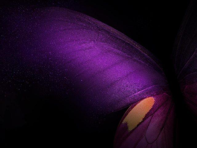 Фиолетовый бабочка галактика стокки акции
