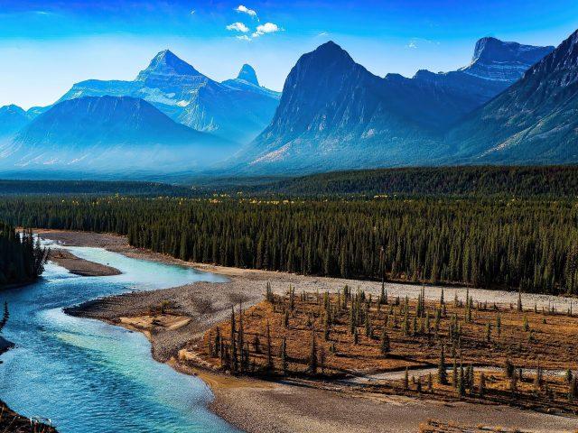 Лесной пейзаж горная природа река живописная природа