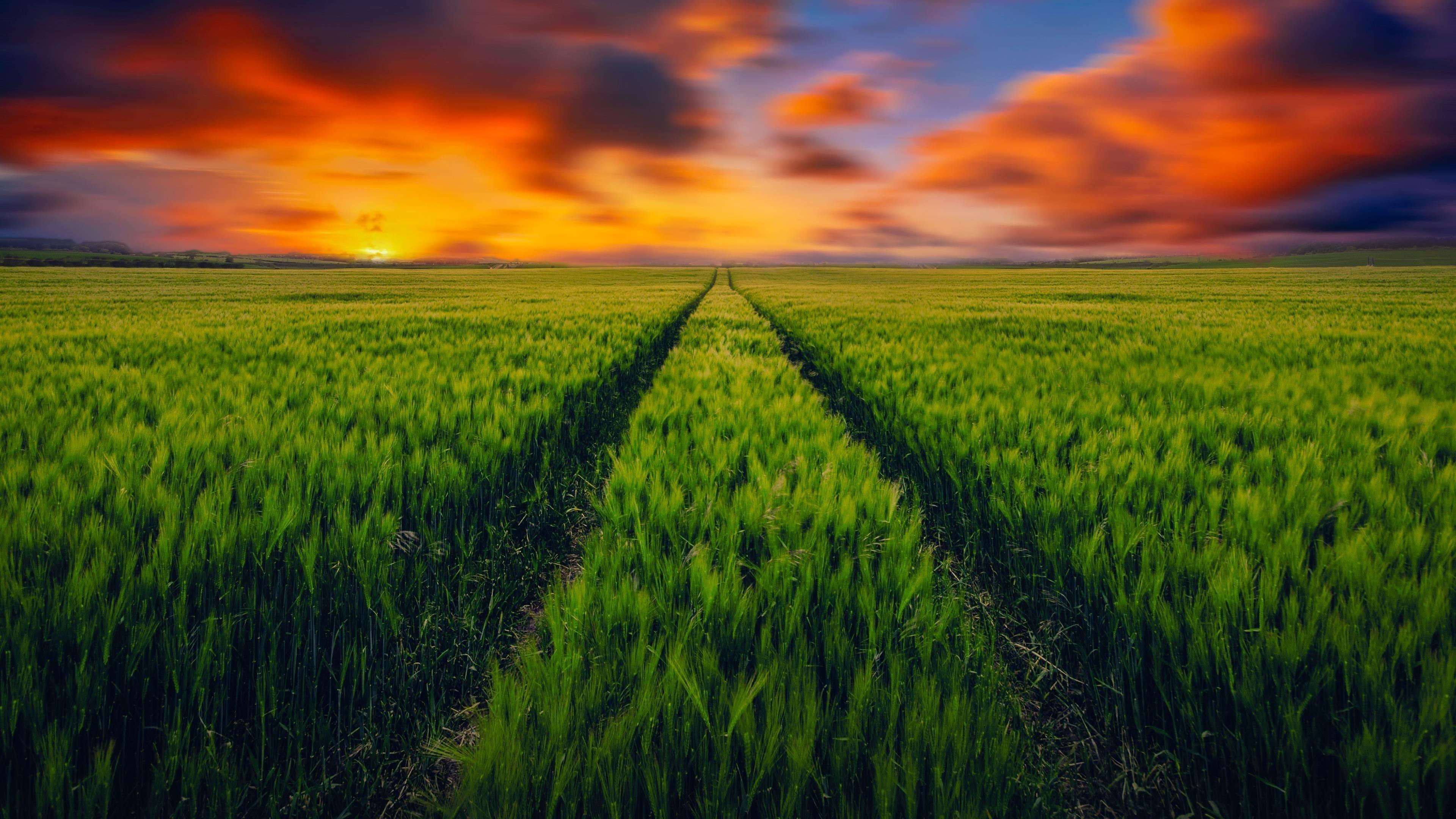 Ландшафтный дизайн газон пейзаж обои скачать
