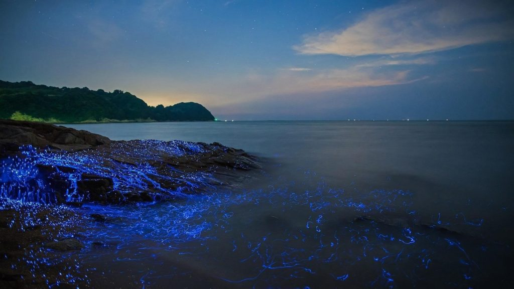 Морские светлячки на скале и водоеме с пейзажным видом на горы под голубым небом природа обои скачать